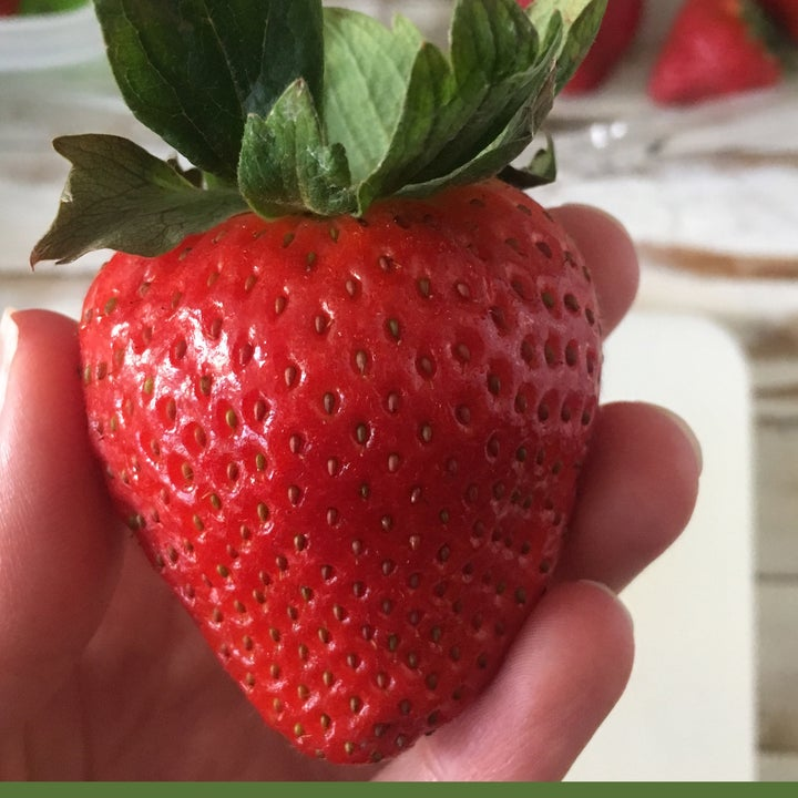 Reviewer showing strawberry after using container