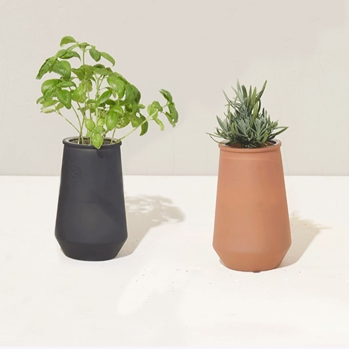 A pair of planters growing lavender and basil