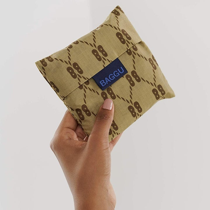 Model holding bag placed in pouch