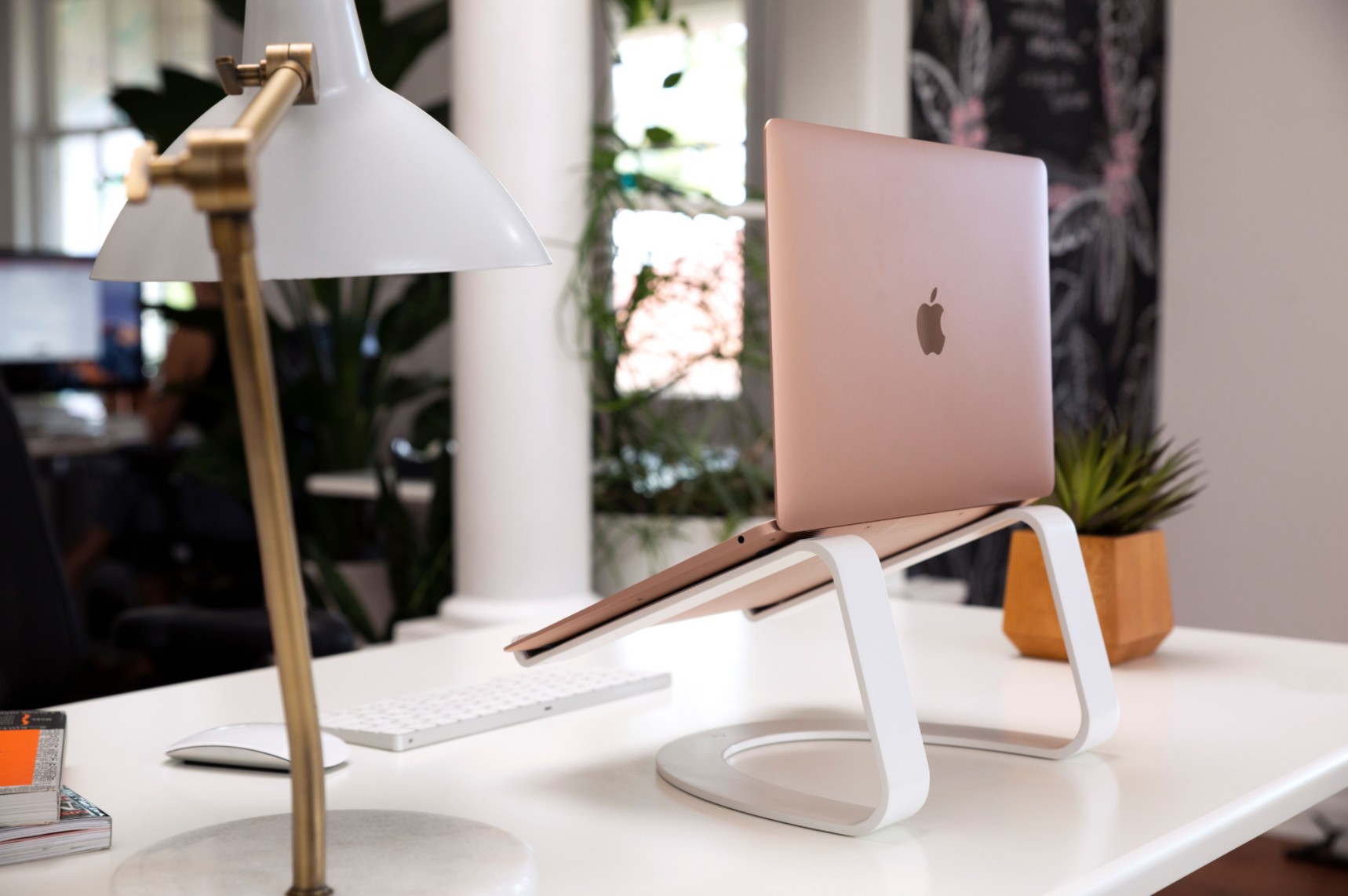 curve laptop stand