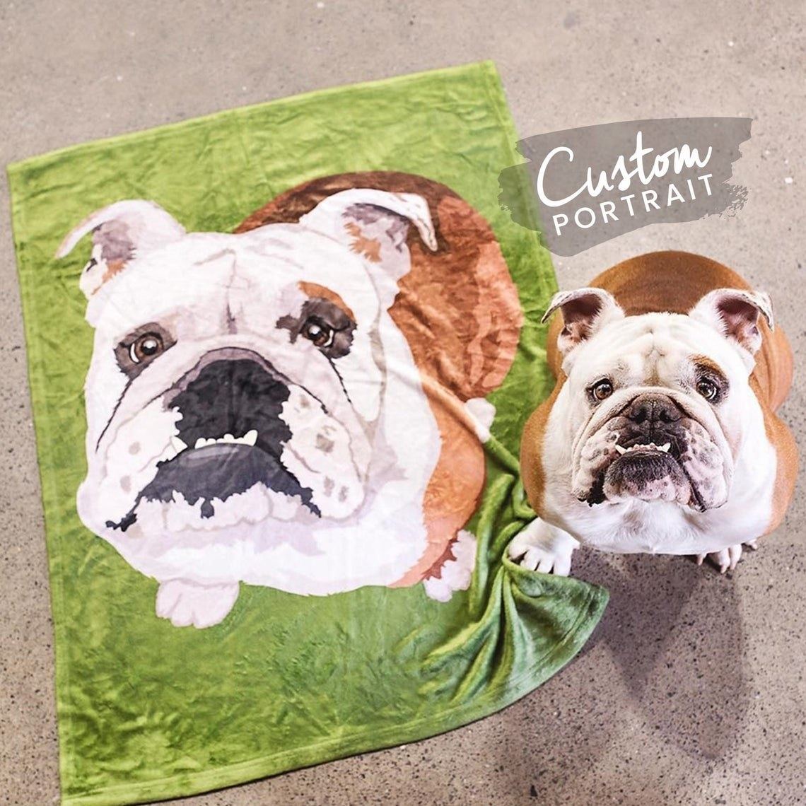English bulldog posing beside a blanket with an illustrated pic of them on it
