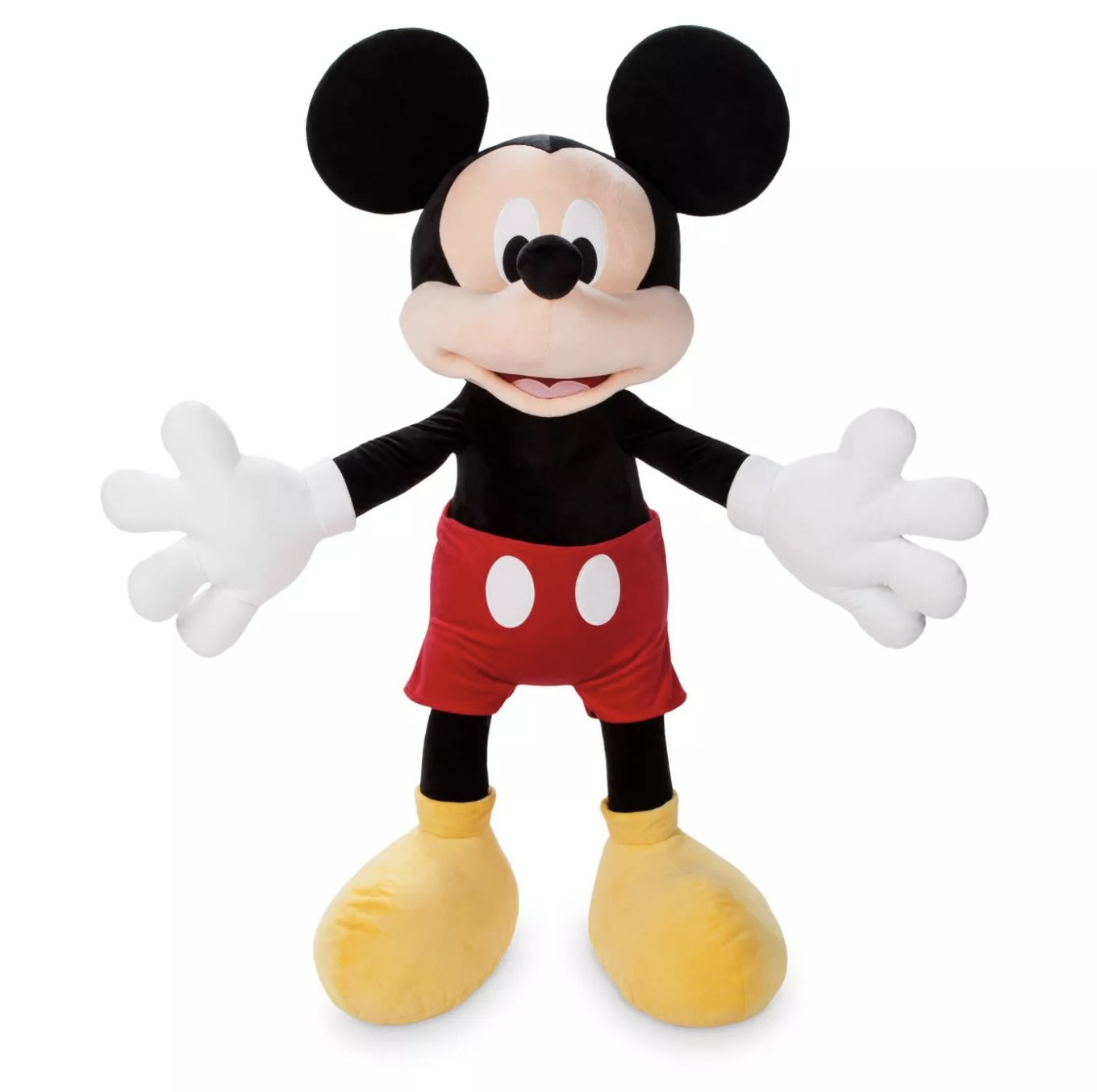 The Mickey Mouse plush
