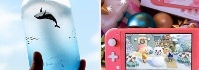 left image: whale water bottle, right image: nintendo switch and animal crossing game
