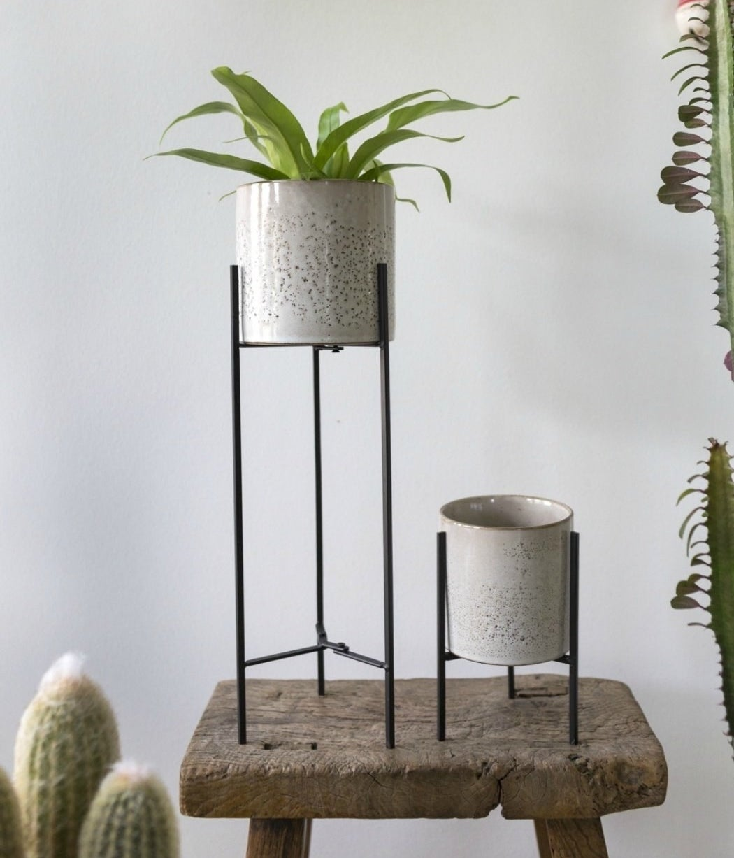 The black plant stand