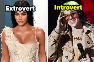 """Kim Kardashian is on the left labeled, """"Extrovert"""" with Billie Eilish labeled, """"Introvert"""""""