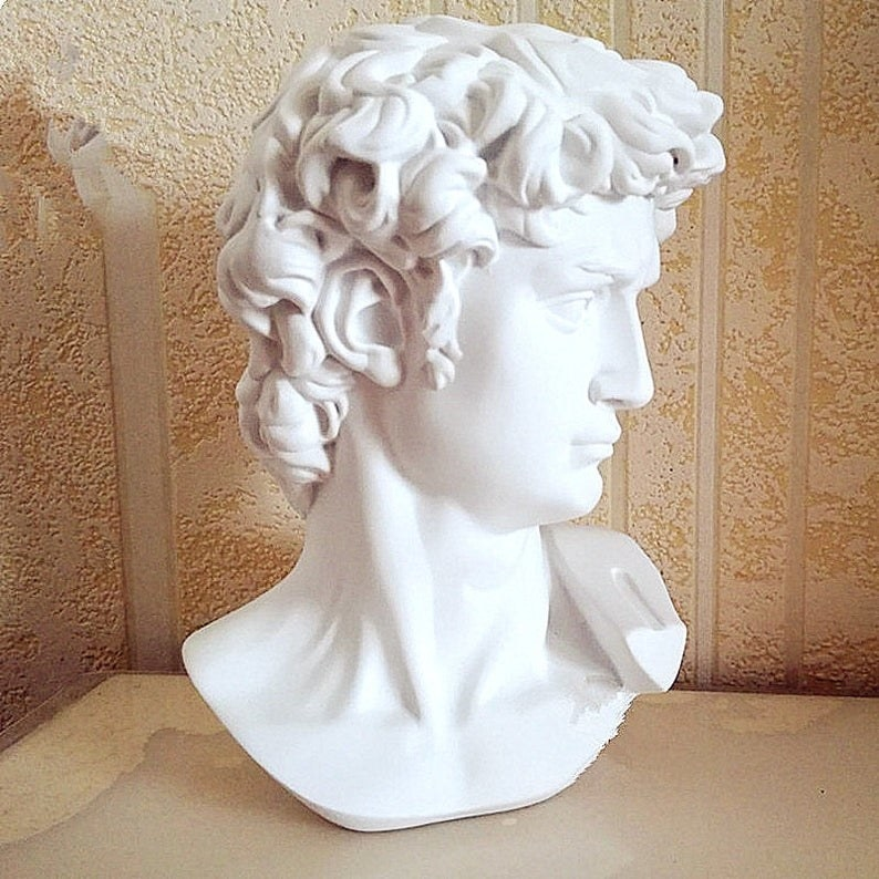 Michelangelo's David head bust