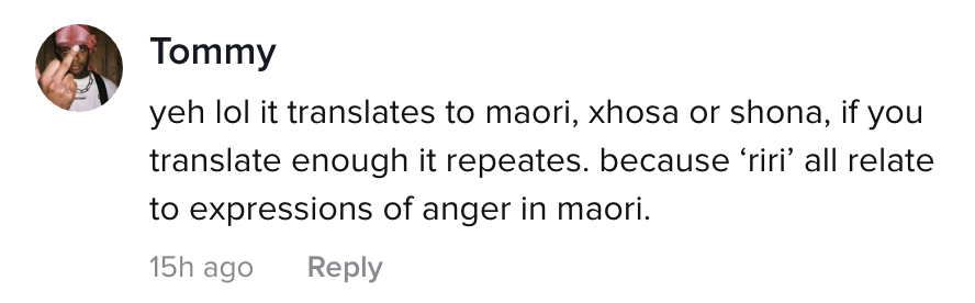 "A TikTok comment: ""yeh lol it translates to maori, xhosa or shona, if you translate enough it repeats because 'riri' all relate to expressions of anger in maori"""