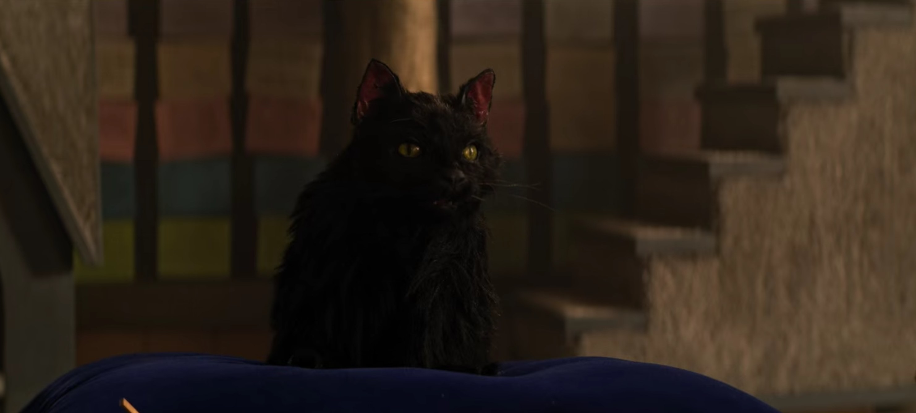 Salem in the parallel universe