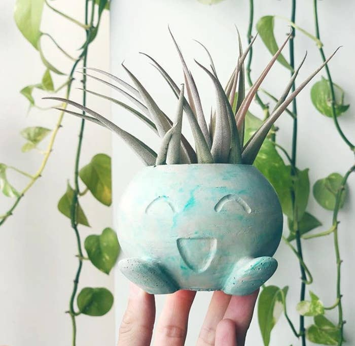 A person's hand holding a small plant pot in the shape of a Pokemon Oddish