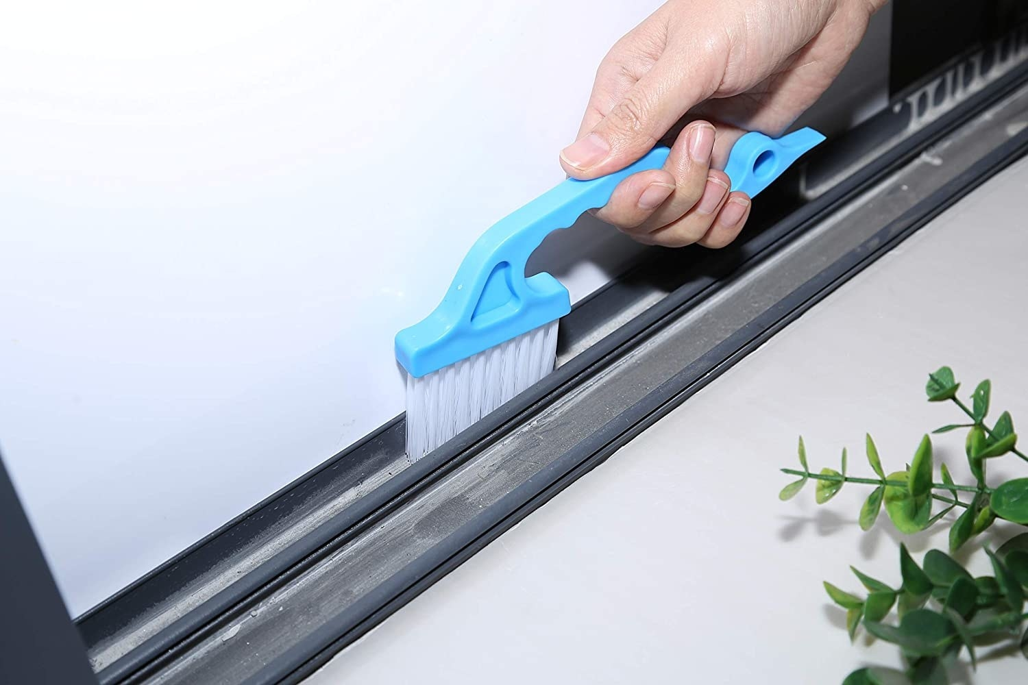 A model using the blue cleaning brush on a window
