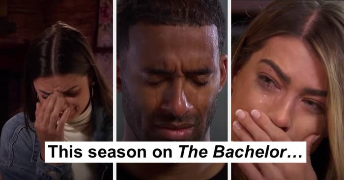 """Matt and two of the contestants crying with the caption """"This season on The Bachelor..."""""""