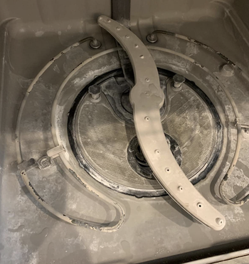 The inside of a reviewer's dishwasher looking dirty