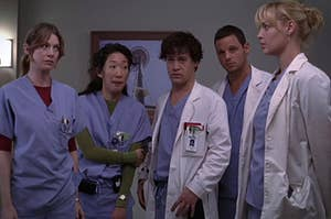 The original five interns, meredith, cristina, george, alex and izzie