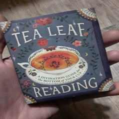 a reviewer nholding the tea reading book in their palm