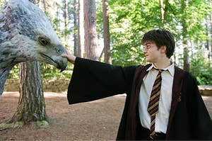 Harry Petting Buckbeak in the care of magical creatures class