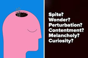 """A drawing of a head with a hole in it, stairs going down, and stars inside. The title text reads """"Spite? Wonder? Perturbation? Contentment? Melancholy? Curiosity? """""""