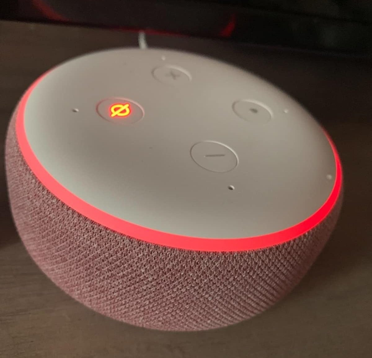 reviewer's echo dot in plum