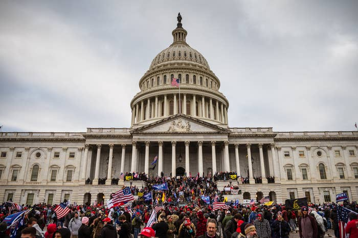 A large group of pro-Trump protesters stand on the East steps of the Capitol Building