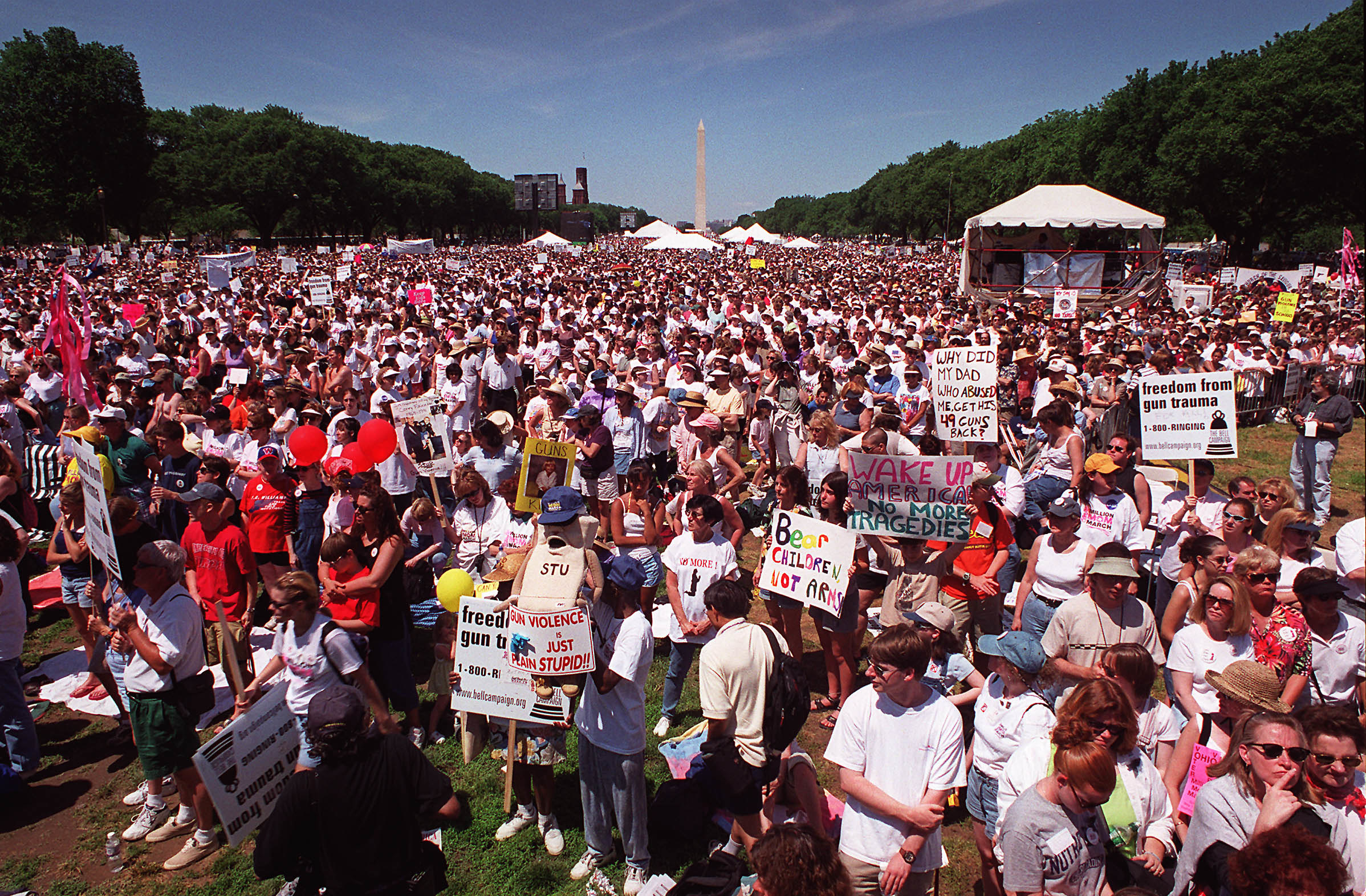 Protestors on the National Mall