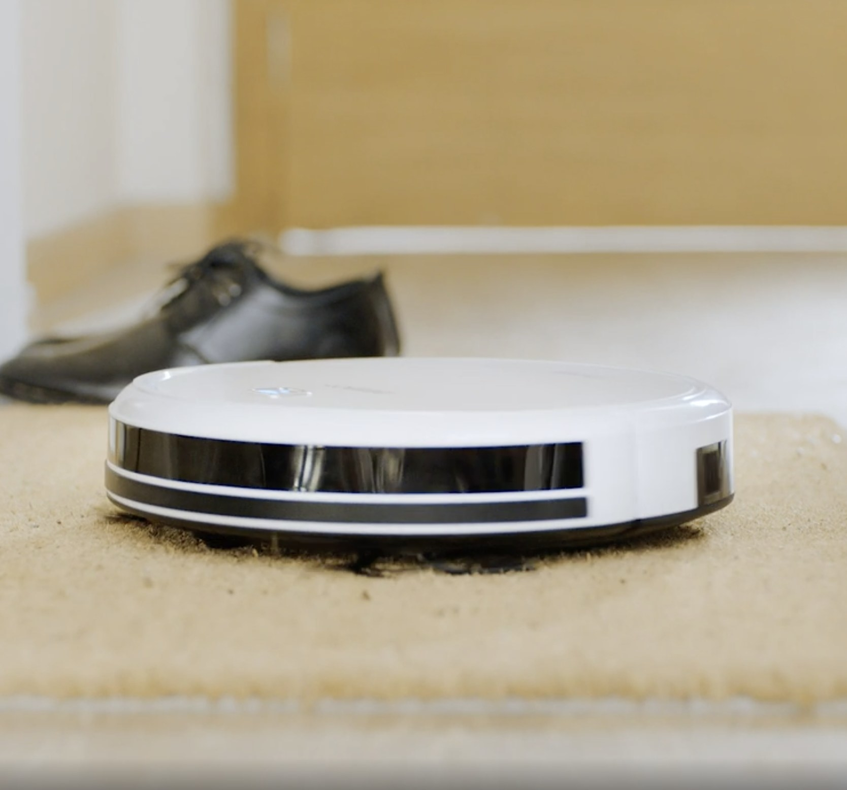 The robotic vacuum on a rug