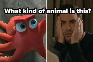what kind of animal is this? question over octopus from finding dory and confused looking david from schitts creek