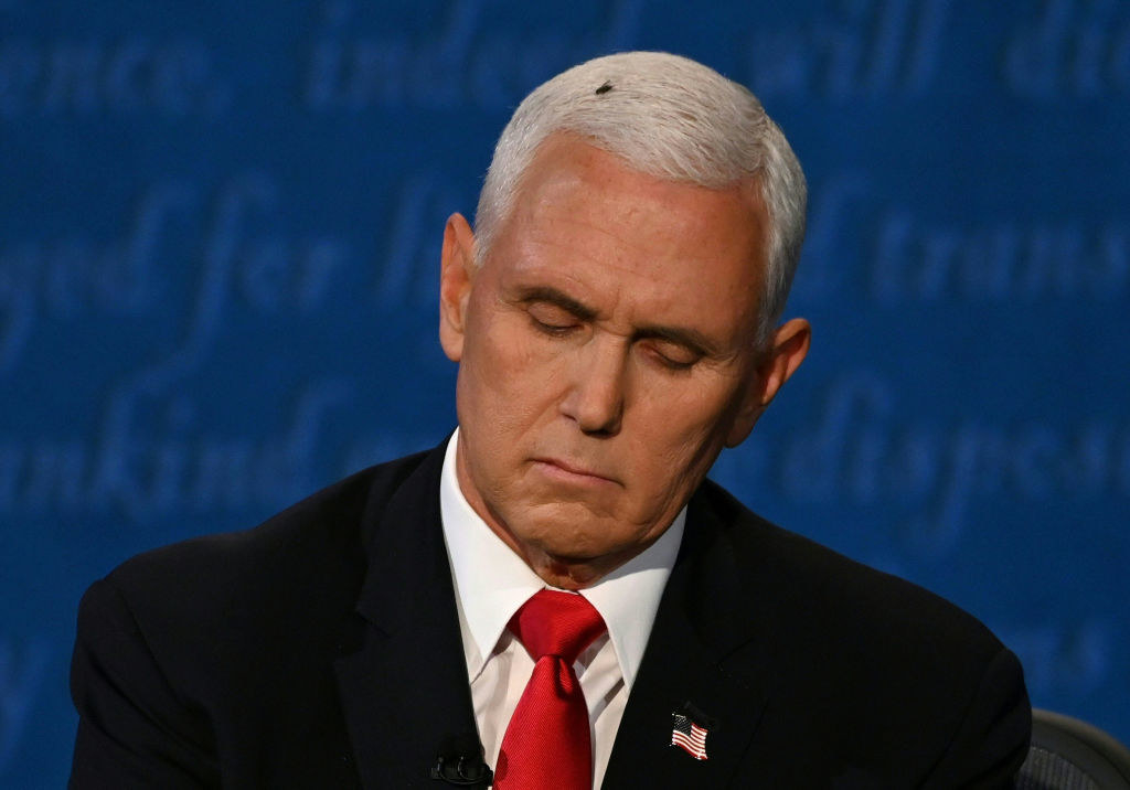 Pence with a fly on his head during the Vice-Presidential debate with Vice-President-elect Kamala Harris