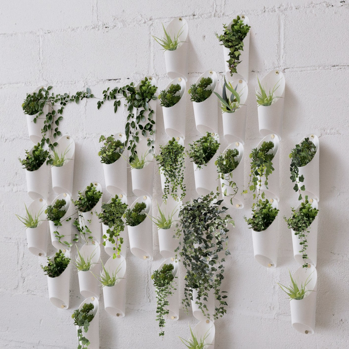 Many sets of three plant holders, filled with plants, and arranged on a wall
