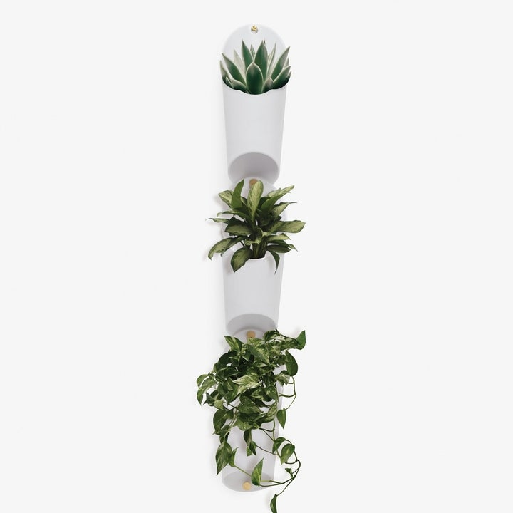 The set of three plant holders, filled with plants, and arranged straight up and down on a wall