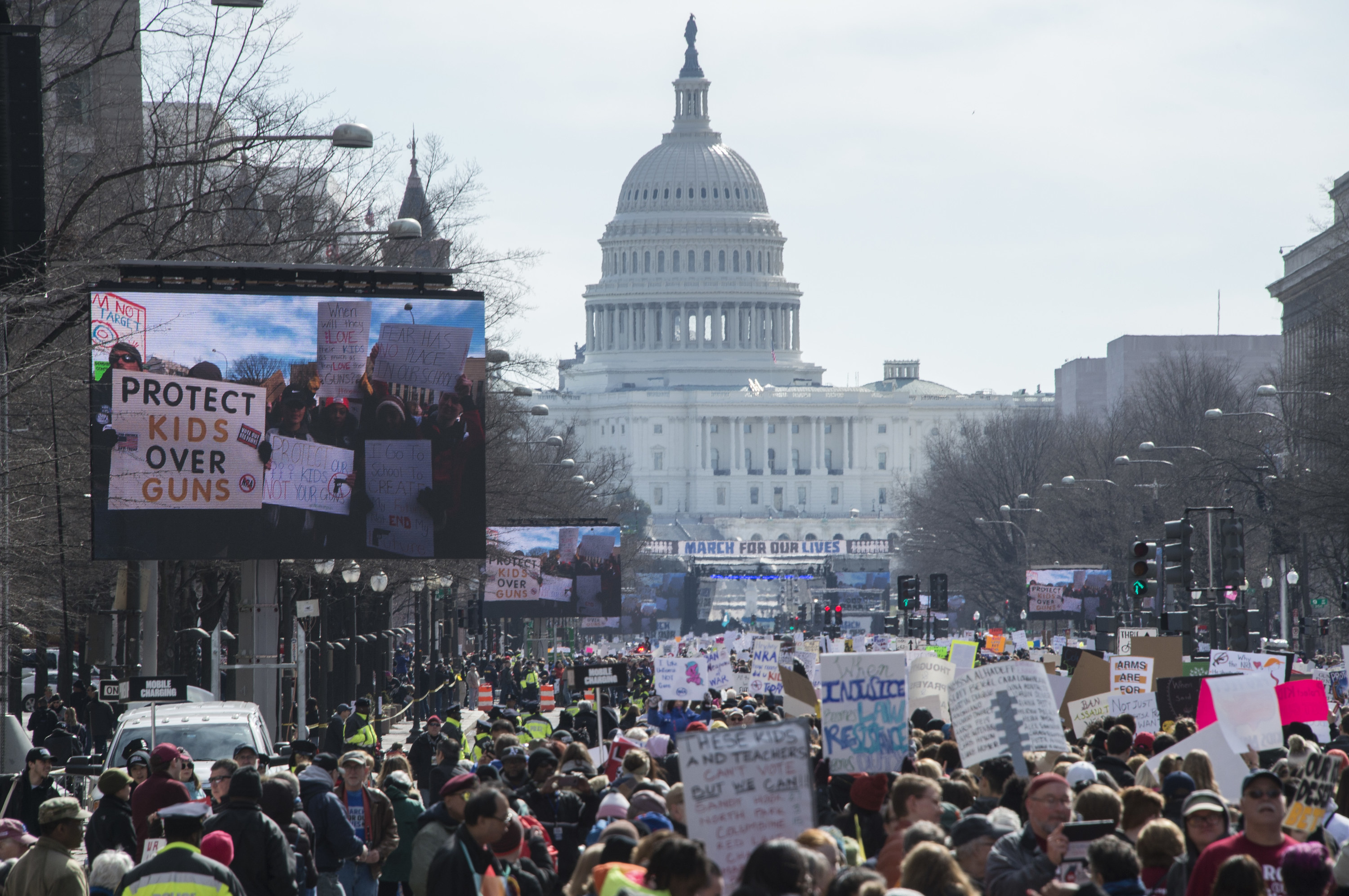 Protestors fill the street in front of the Capitol