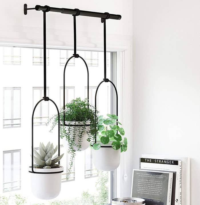 A metal hanging contraption with three plants hanging off of it