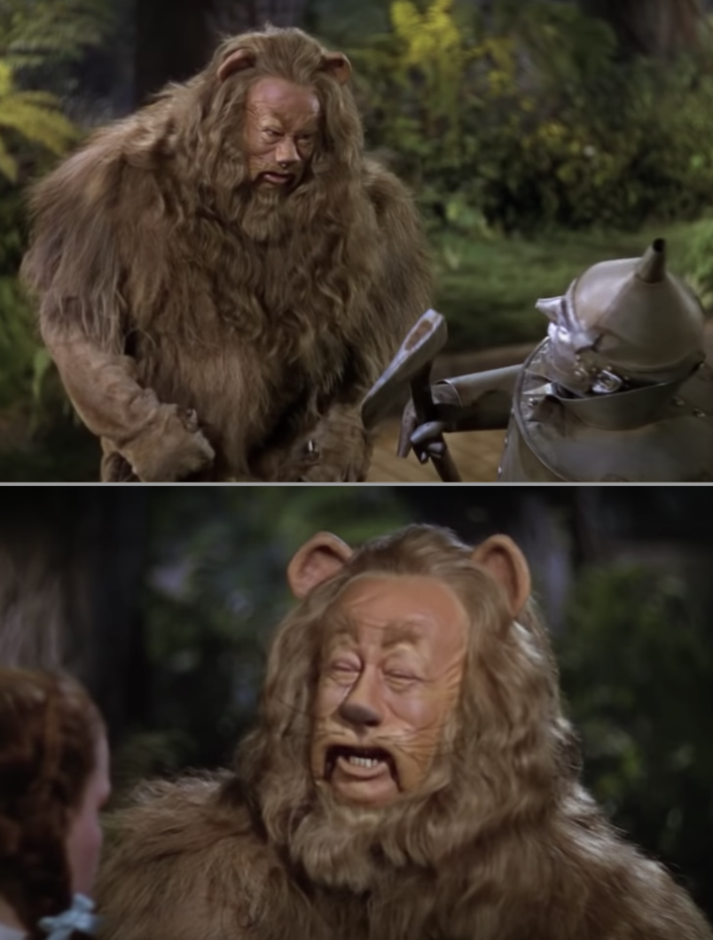 Close-ups of the Cowardly Lion's hair