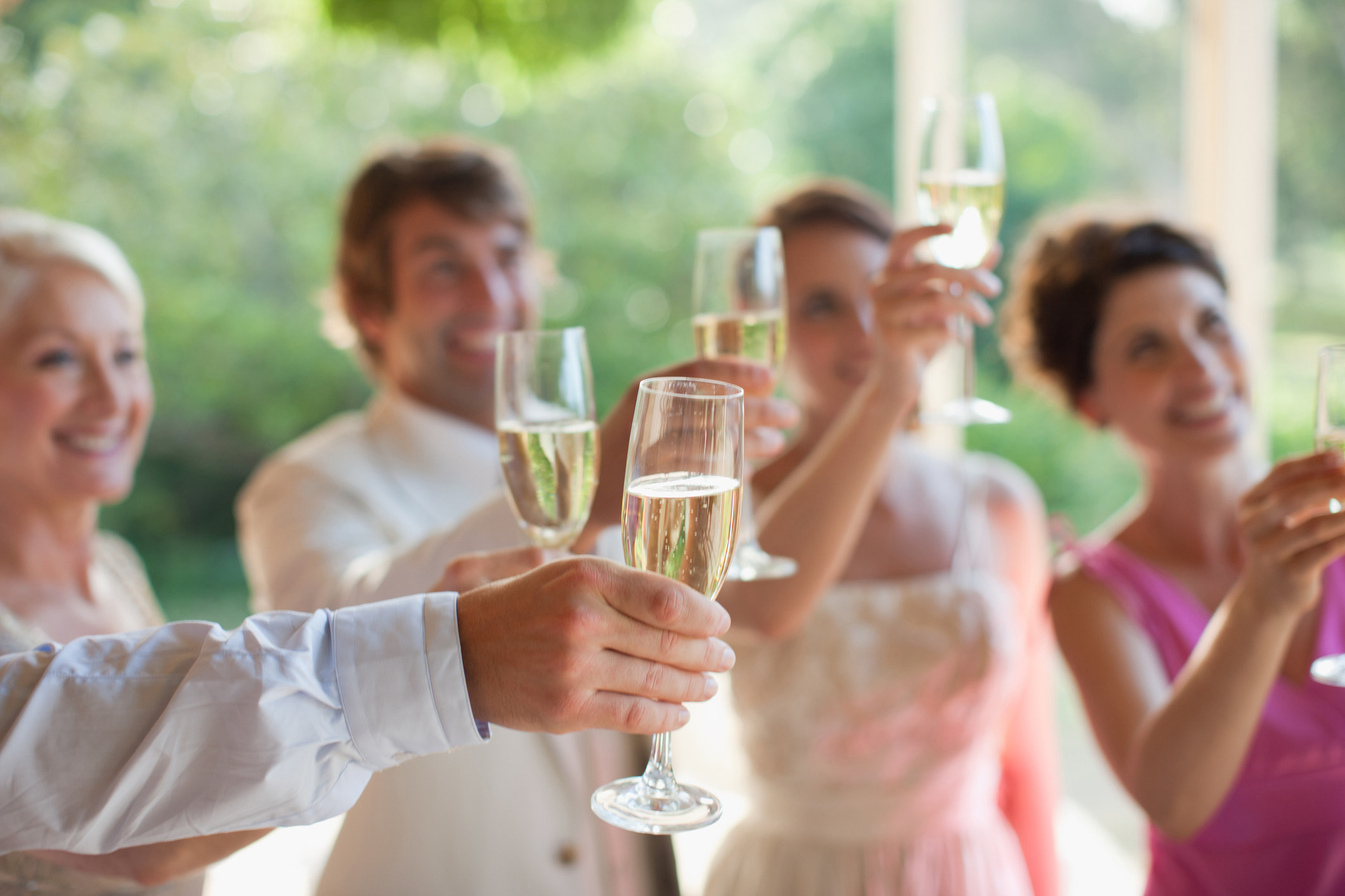 Wedding guests raise their glasses for a toast