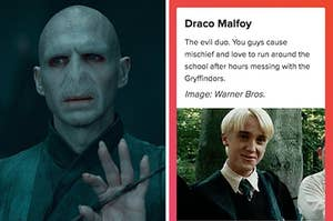 lord voldemort on the left and draco malfoy on the right