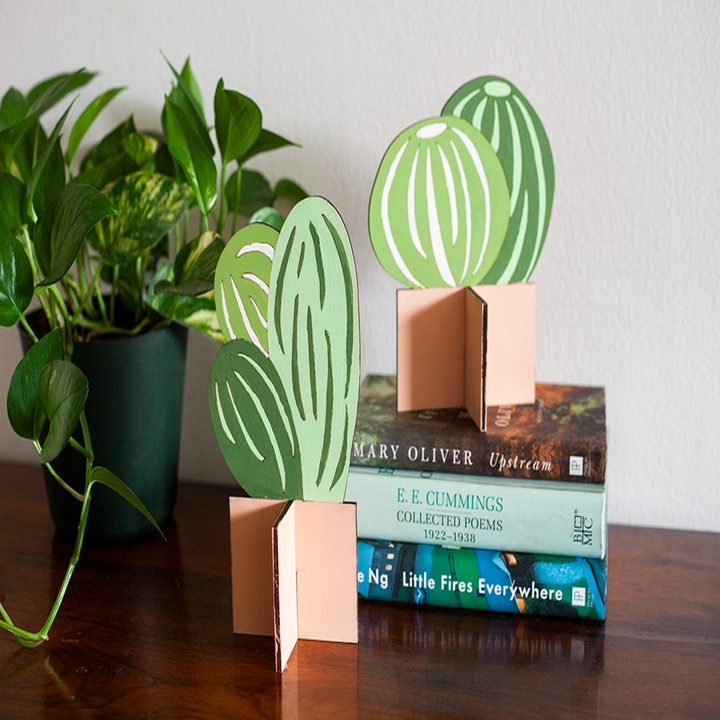 two small green wood succulents on a shelf