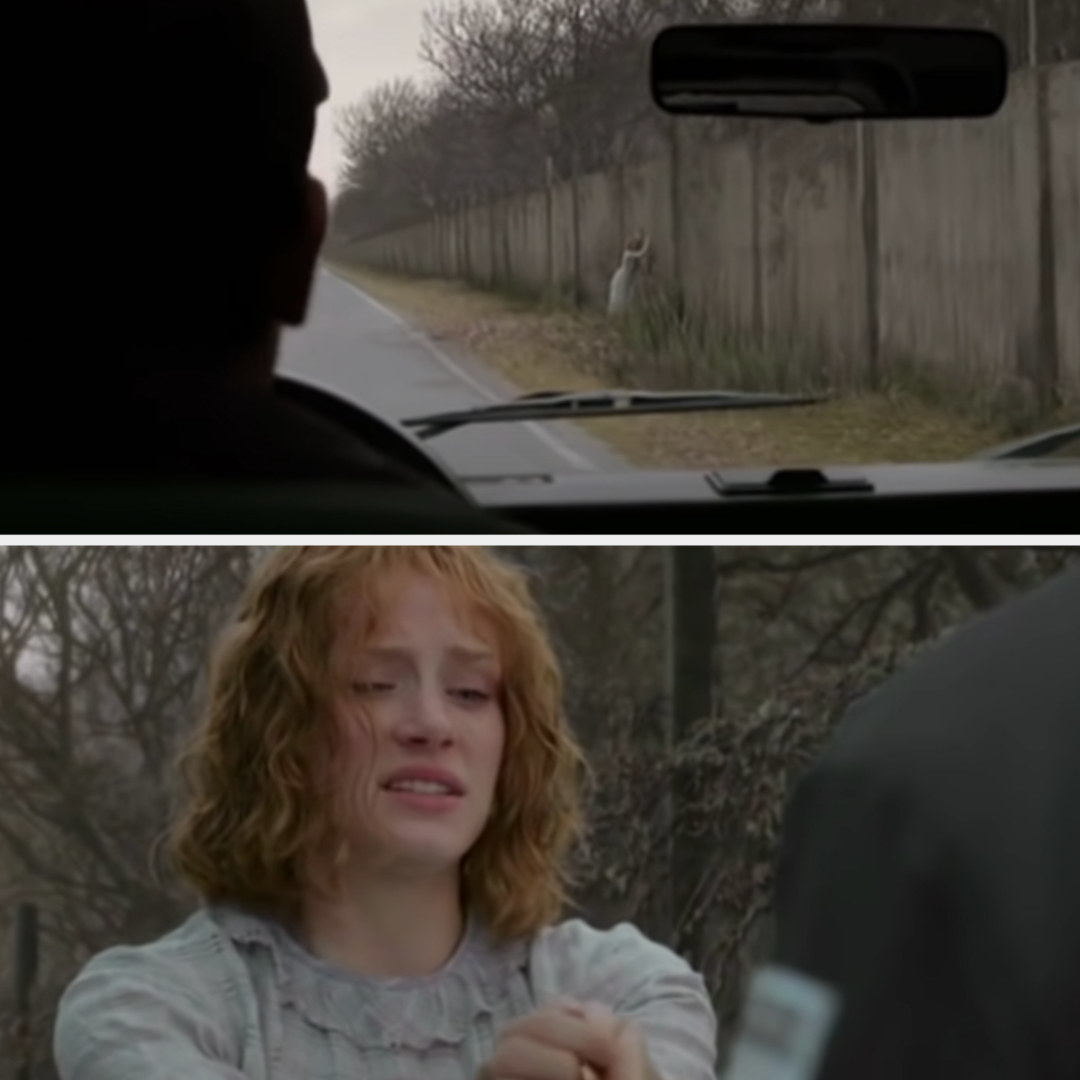 Ivy escapes the fence and a man in a truck sees her