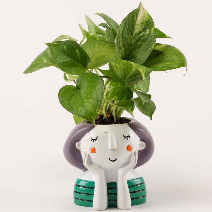 The plant kept in a pot designed to look like a thinking girl