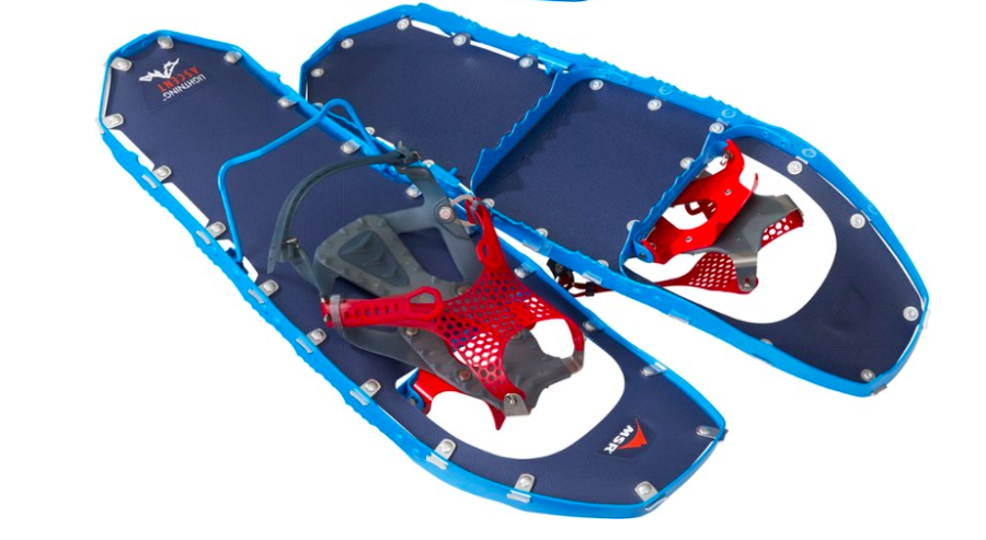 the blue snow shoes