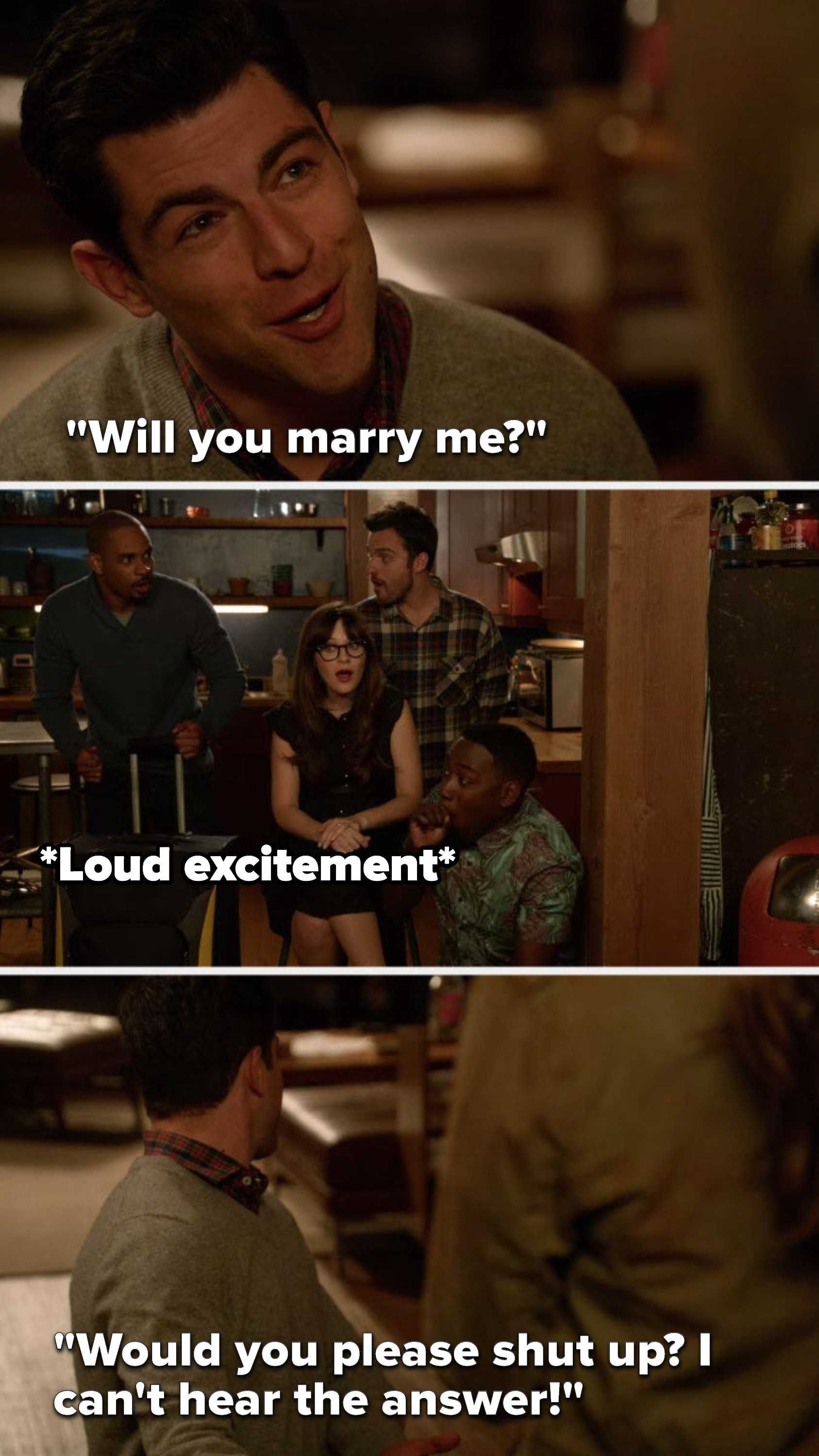 "On ""New Girl"", Schmidt says, ""Will you marry me,"" Everyone freaks out and then he says, ""Would you please shut up, I can't hear the answer"""