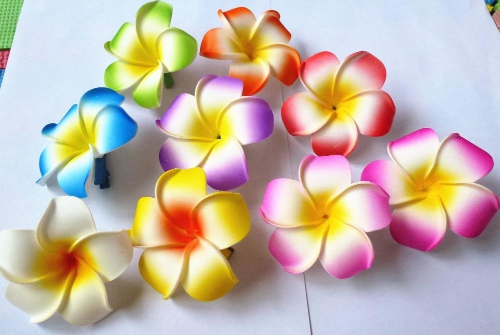Smaller frangipani clips in a variety of different colours