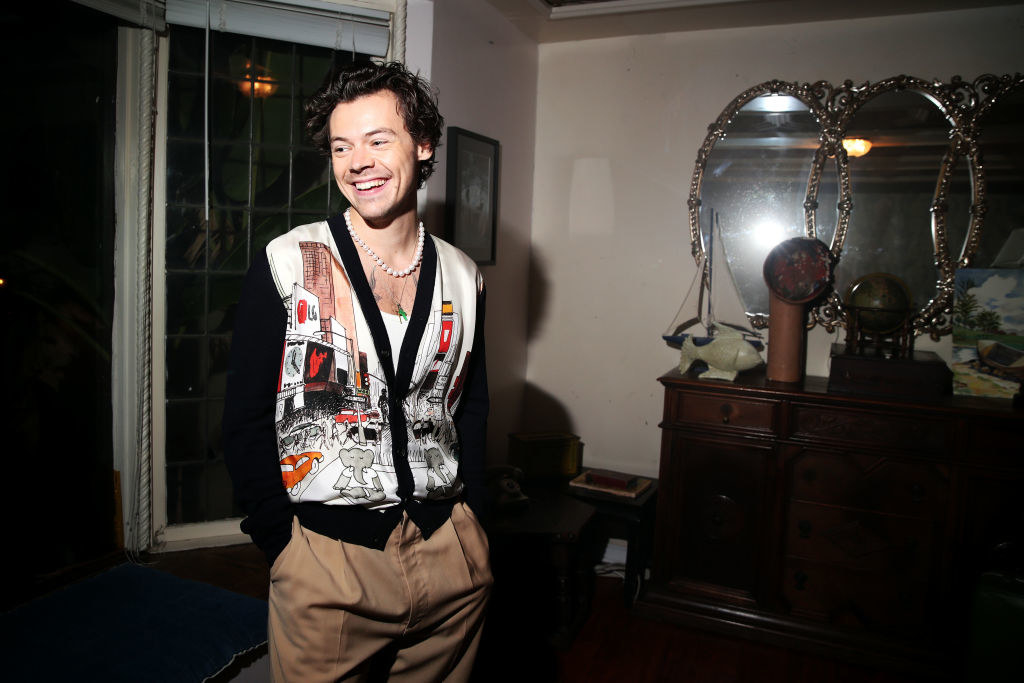 Harry Styles smiling alone in a room, wearing a cardigan