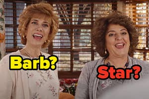 Kristen Wiig and Annie Mumolo as Barb and Star