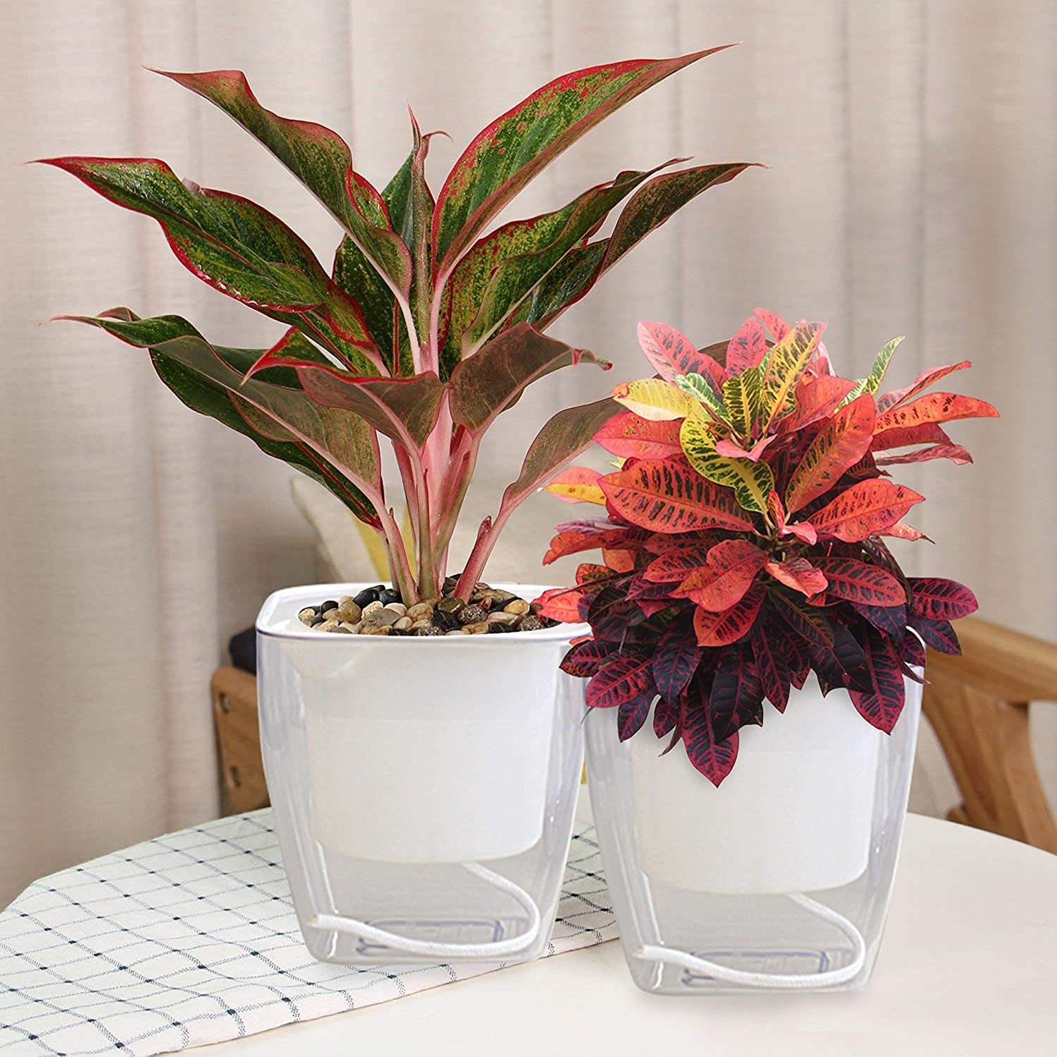Two self-watering flower pots on a table