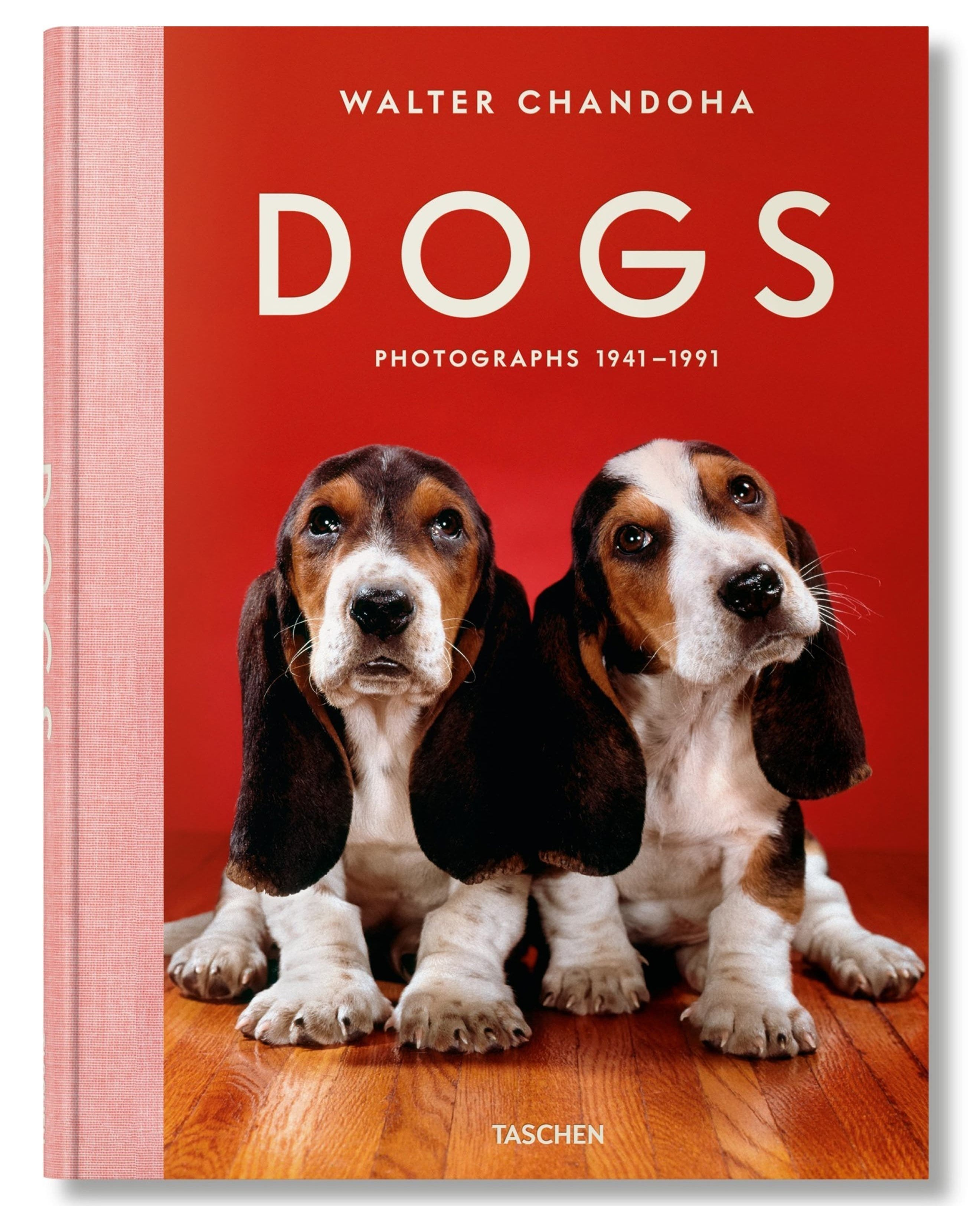 """""""dogs"""" book with two puppies on the cover"""