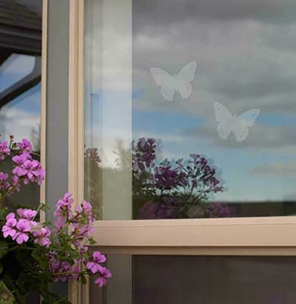 two butterfly decals on a window