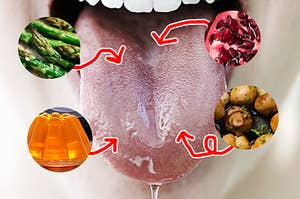 An image of a salivating tongue and images of asparagus, Jell-O, mushrooms, and pomegranates pointing to different regions
