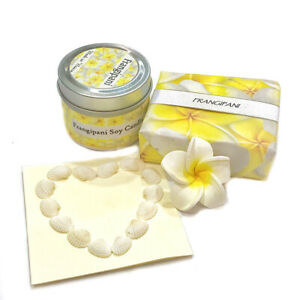 A collection of a frangipani soy candle, frangipani soap, seashells and a ceramic frangipani