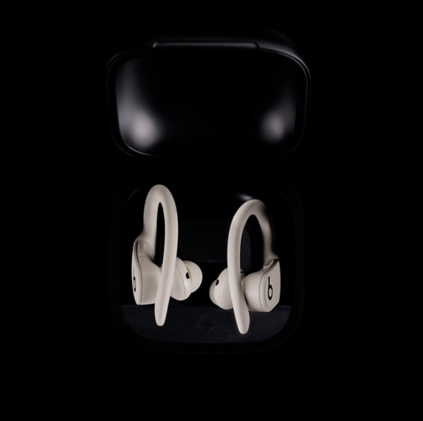The earphones