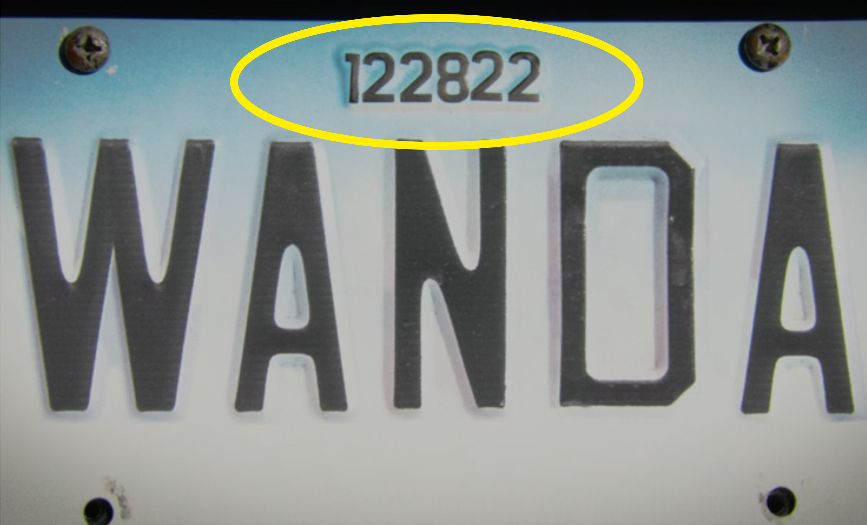 "A license plate saying ""Wanda"" with the numbers ""122822"" above her name"