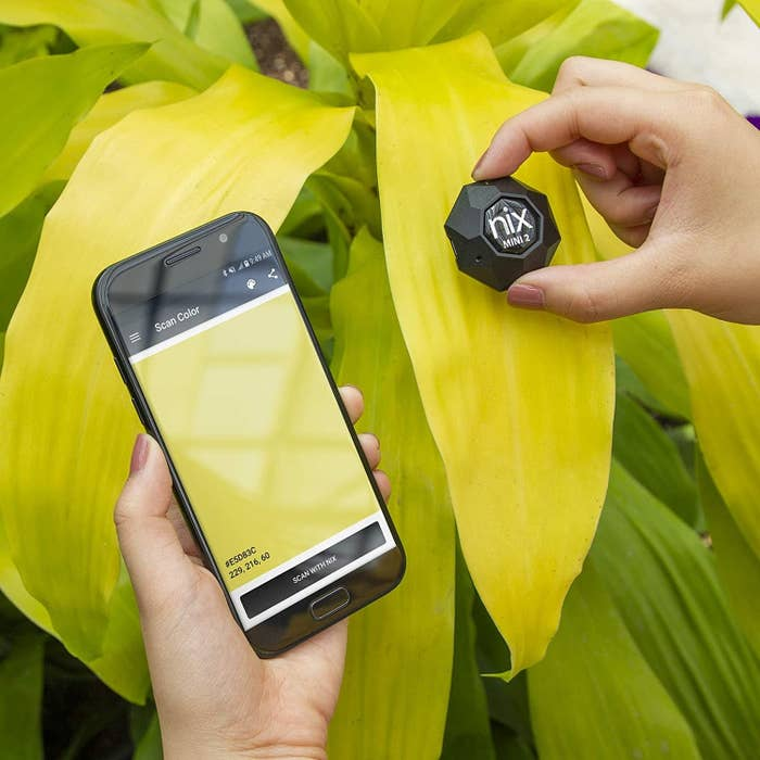 A person holding the colour sensor up to a leaf