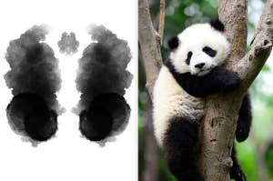 An inkblot and a panda in a tree